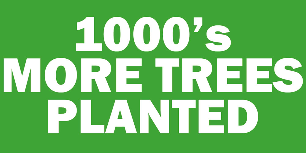 1000s More Trees Planted